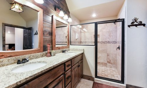 4BV-Master Bathroom shower